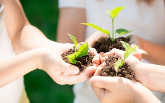 5 dicas para tornar o condomínio mais sustentável